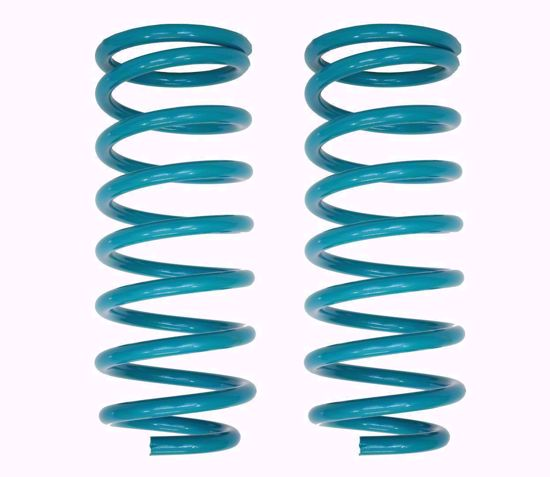 Picture of Dobinsons C59-331 Coil Springs Pair